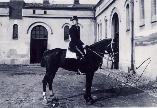 Hästen Frey
